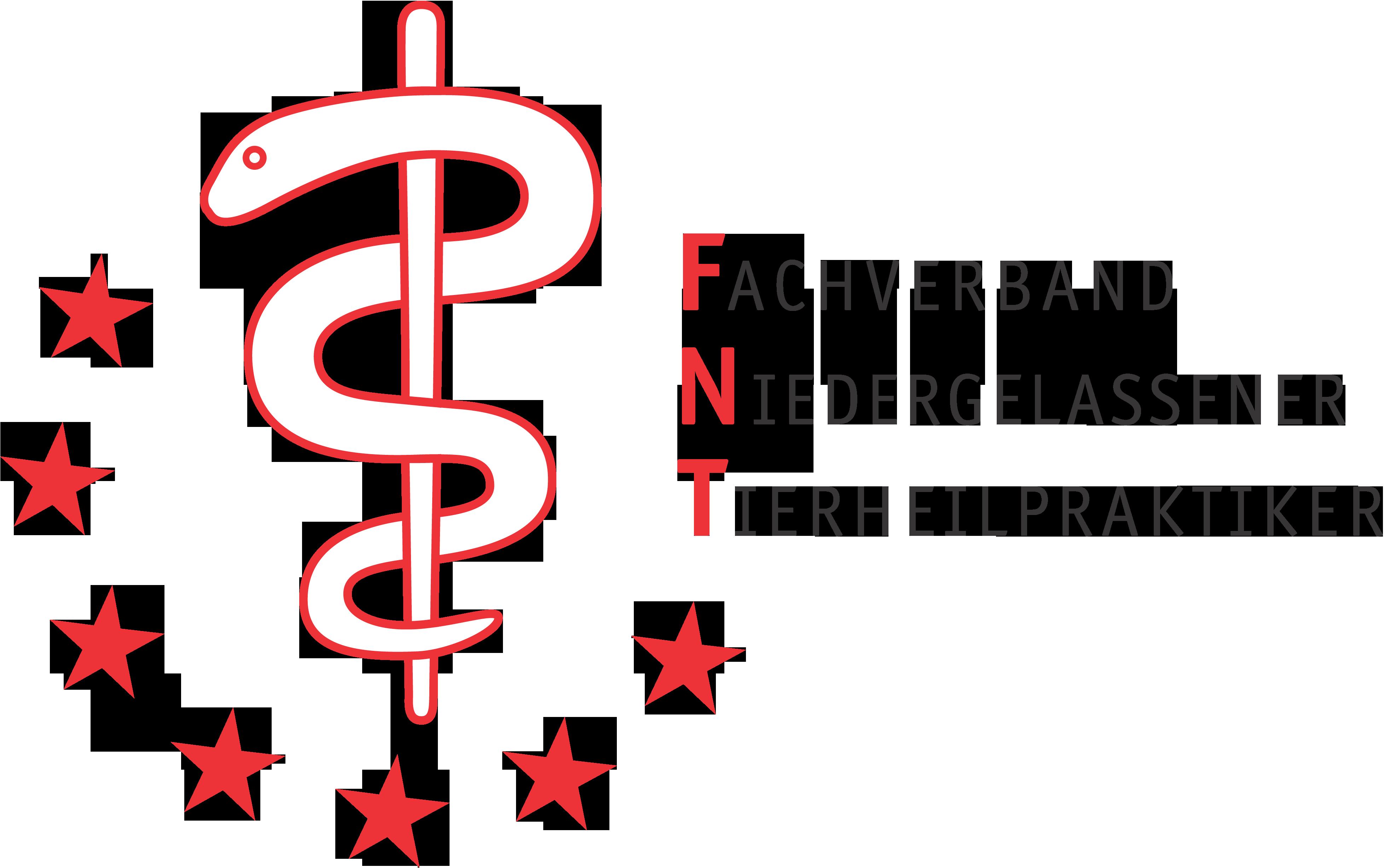 FNT Logo eps Kopie